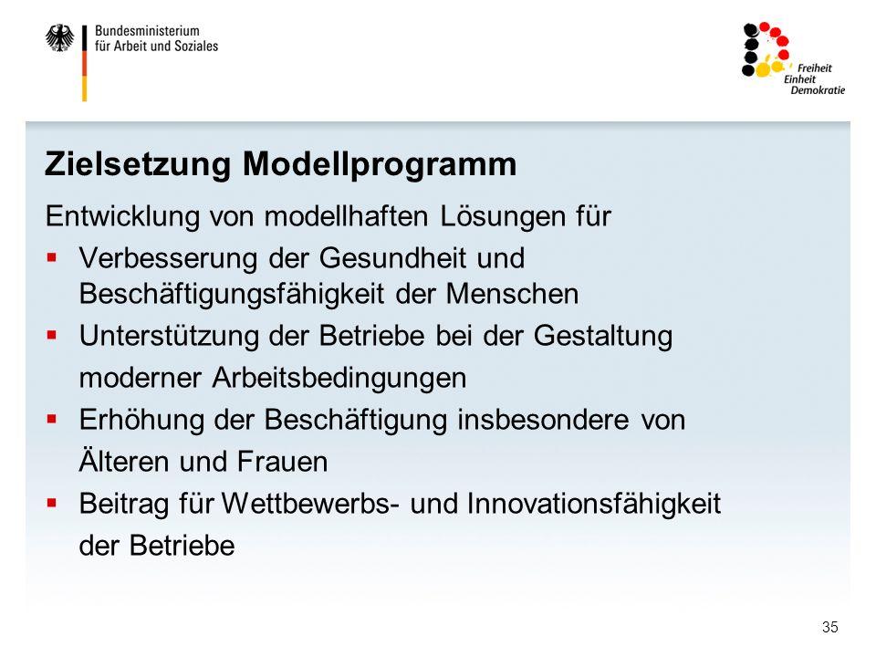 Zielsetzung Modellprogramm
