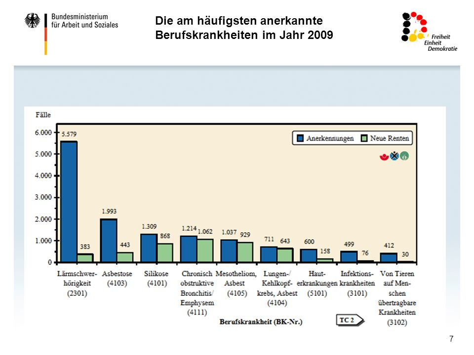 Die am häufigsten anerkannte Berufskrankheiten im Jahr 2009
