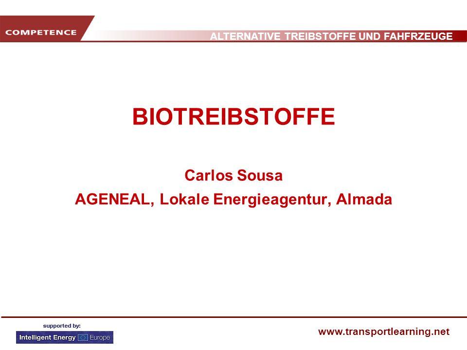 BIOTREIBSTOFFE Carlos Sousa AGENEAL, Lokale Energieagentur, Almada