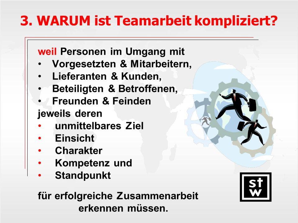 3. WARUM ist Teamarbeit kompliziert