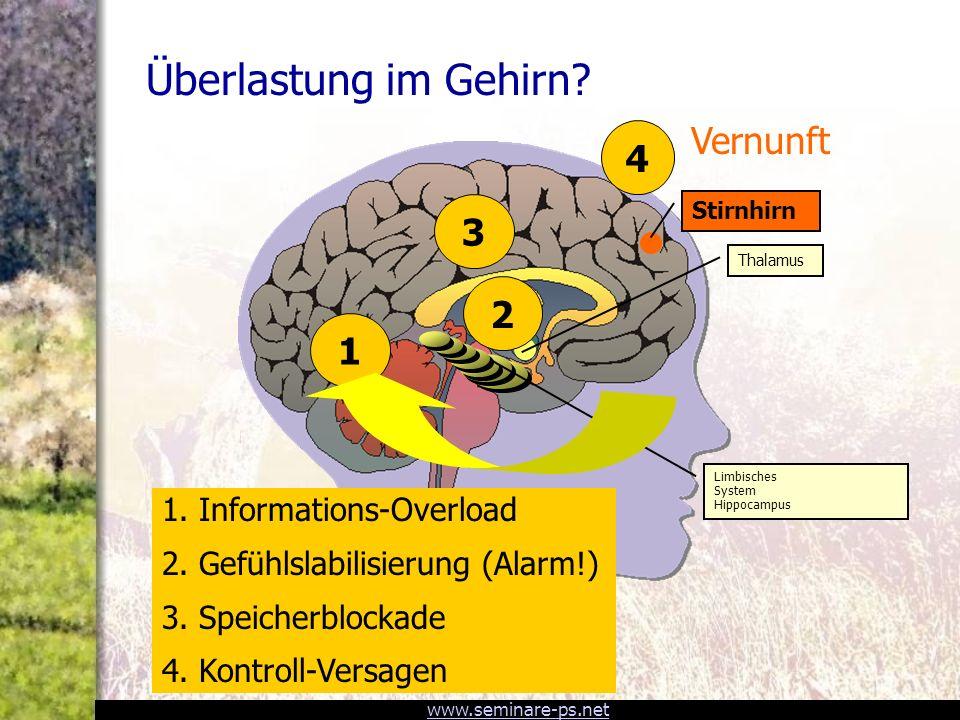 Überlastung im Gehirn Vernunft 4 3 2 1 1. Informations-Overload