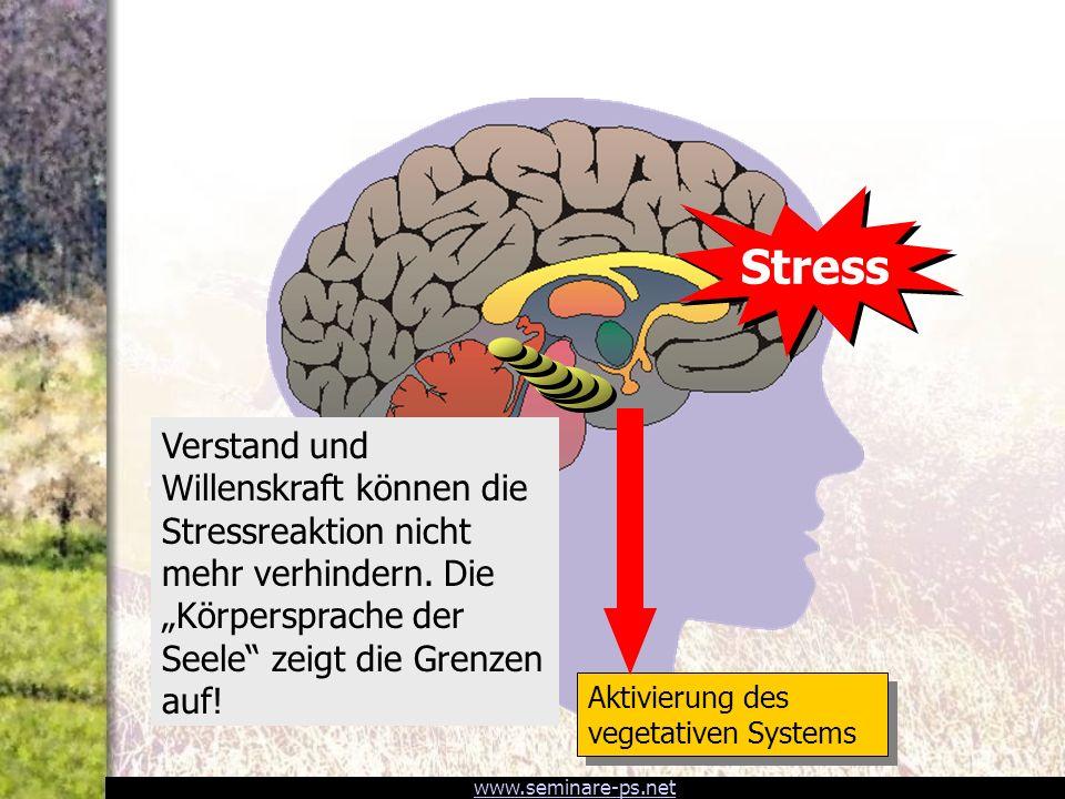 StressAktivierung des vegetativen Systems.