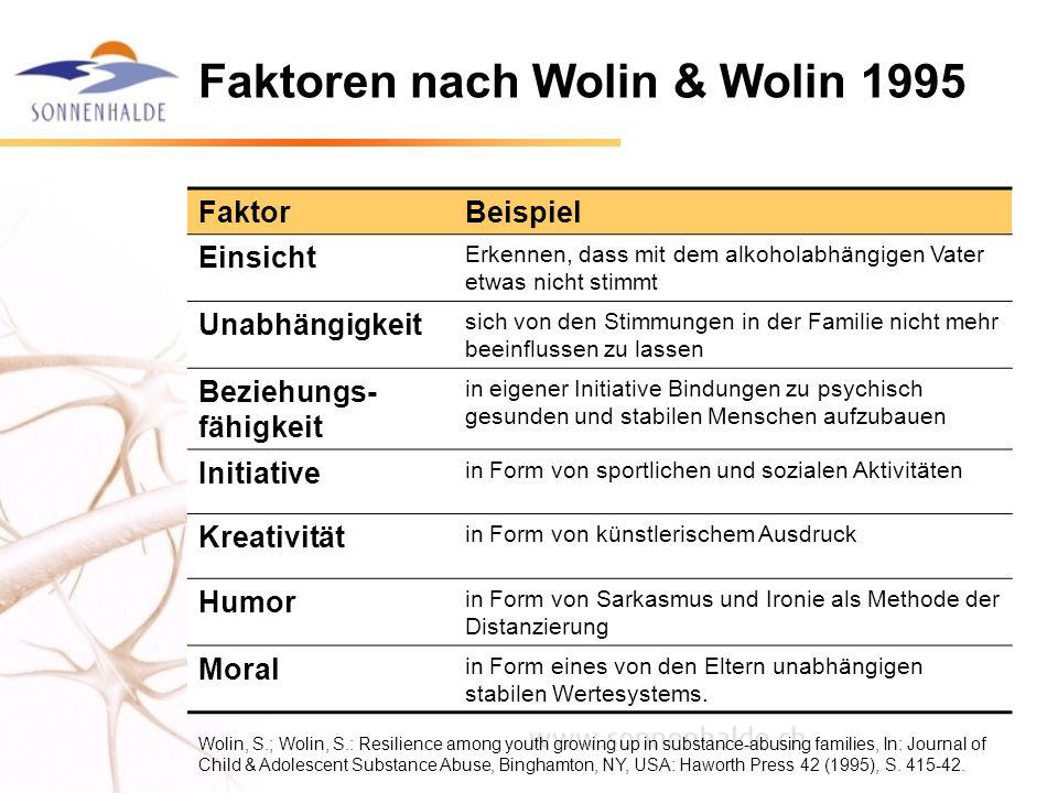 Faktoren nach Wolin & Wolin 1995