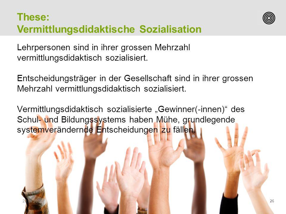 Vermittlungsdidaktische Sozialisation