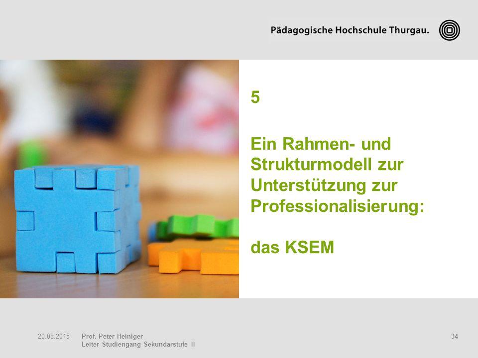 5 Ein Rahmen- und Strukturmodell zur Unterstützung zur Professionalisierung: das KSEM 20.04.2017