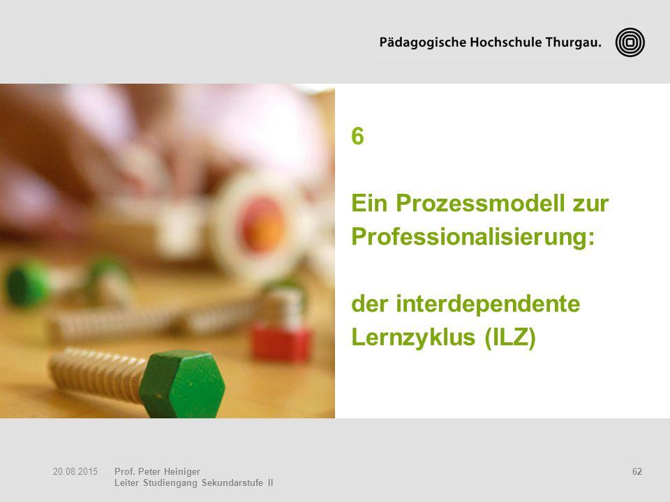 6 Ein Prozessmodell zur Professionalisierung: der interdependente Lernzyklus (ILZ)