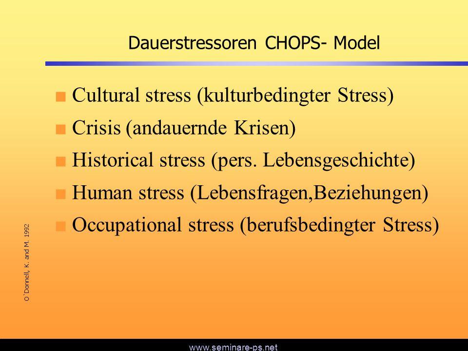 Dauerstressoren CHOPS- Model
