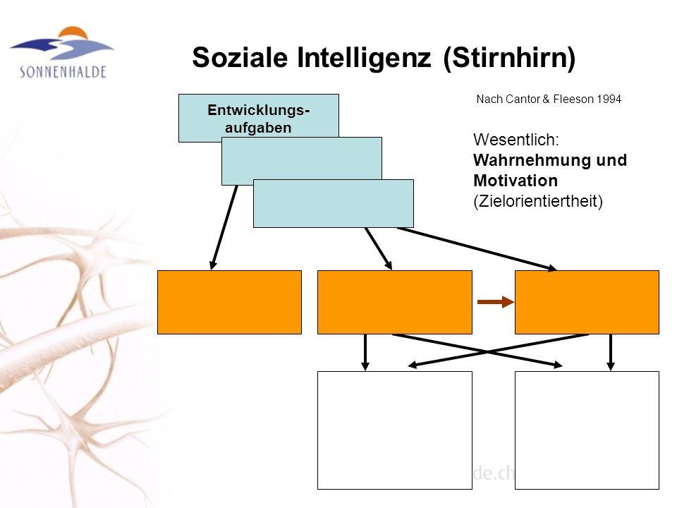 Soziale Intelligenz (Stirnhirn)