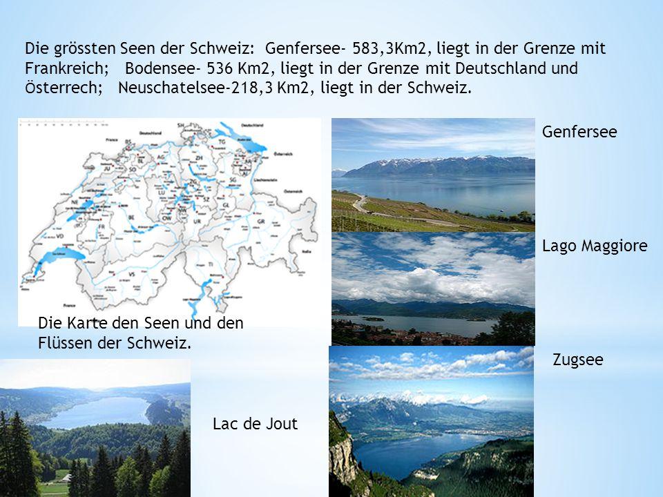Die grössten Seen der Schweiz: Genfersee- 583,3Km2, liegt in der Grenze mit Frankreich; Bodensee- 536 Km2, liegt in der Grenze mit Deutschland und Österrech; Neuschatelsee-218,3 Km2, liegt in der Schweiz.