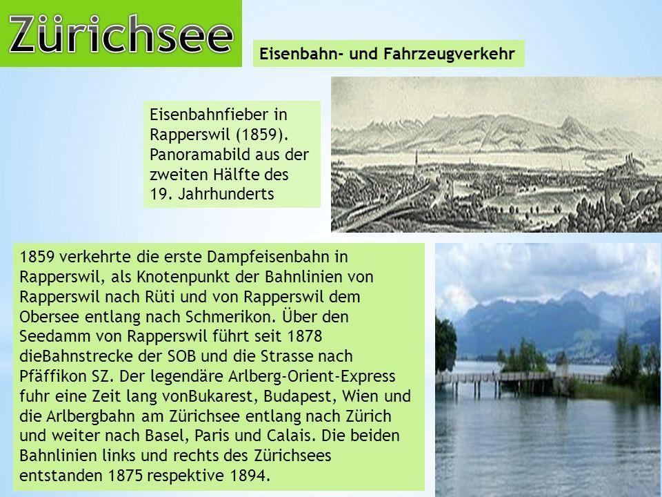 Zürichsee Eisenbahn- und Fahrzeugverkehr