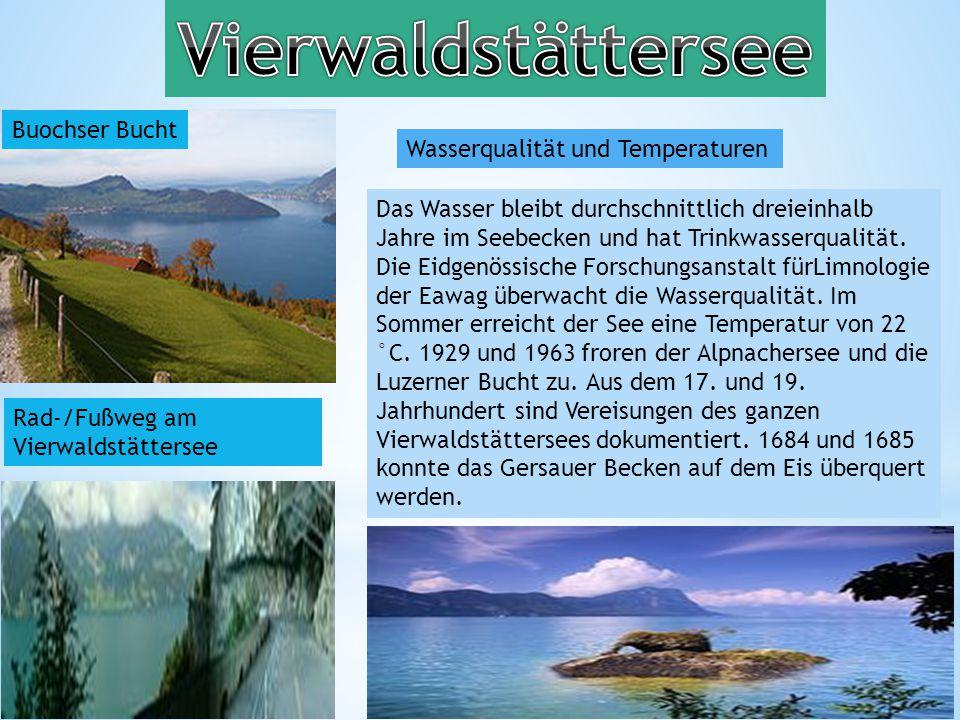 Vierwaldstättersee Buochser Bucht Wasserqualität und Temperaturen