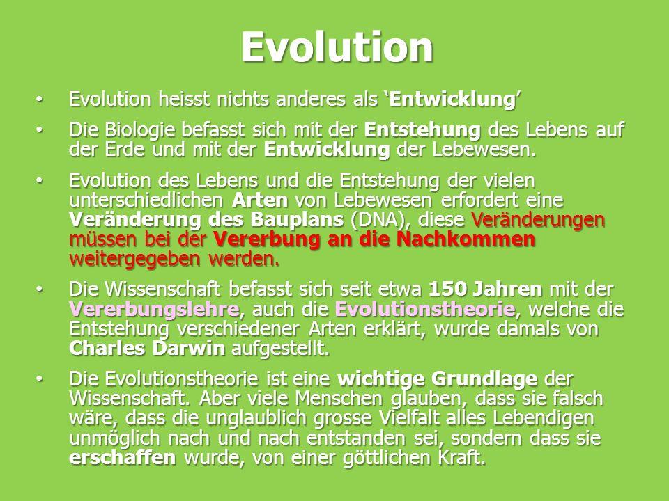 Evolution Evolution heisst nichts anderes als 'Entwicklung'