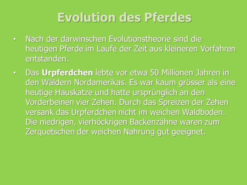 Evolution des Pferdes Nach der darwinschen Evolutionstheorie sind die heutigen Pferde im Laufe der Zeit aus kleineren Vorfahren entstanden.