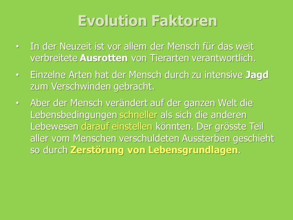 Evolution Faktoren In der Neuzeit ist vor allem der Mensch für das weit verbreitete Ausrotten von Tierarten verantwortlich.