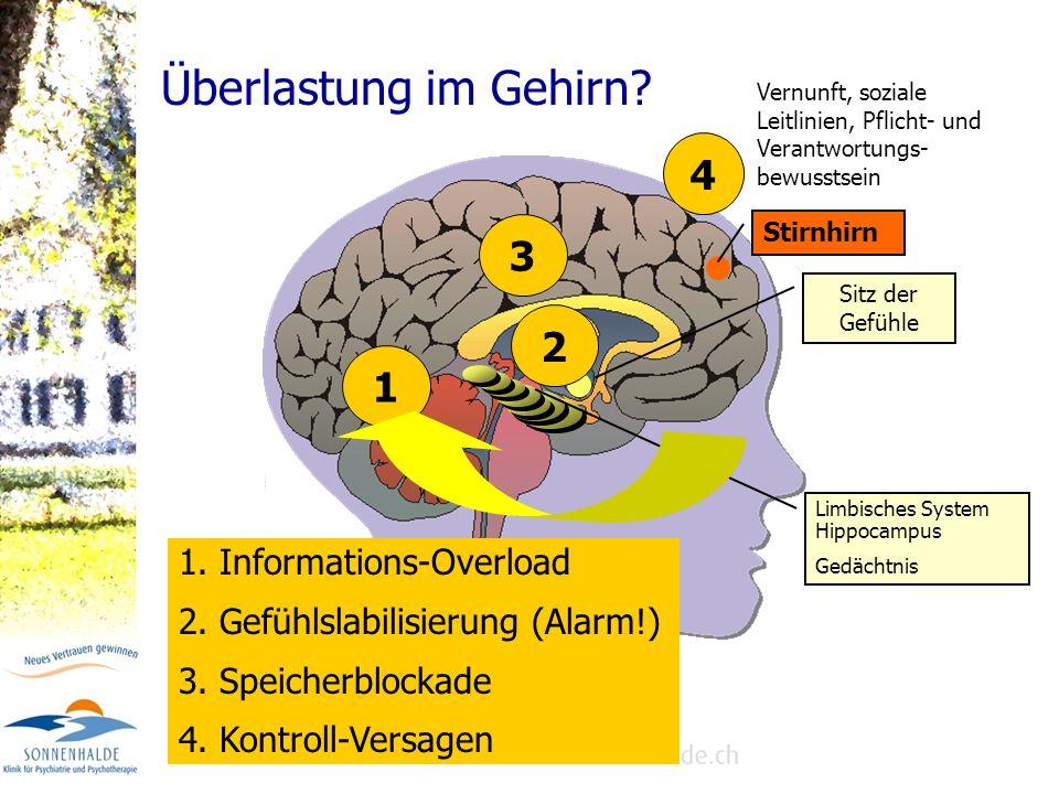 Überlastung im Gehirn 4 3 2 1 1. Informations-Overload