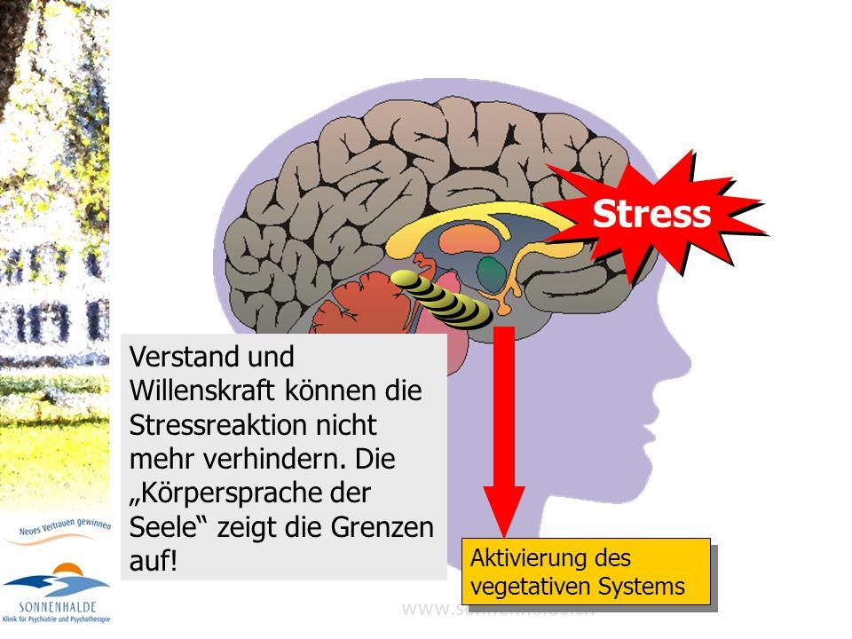 Stress Aktivierung des vegetativen Systems.