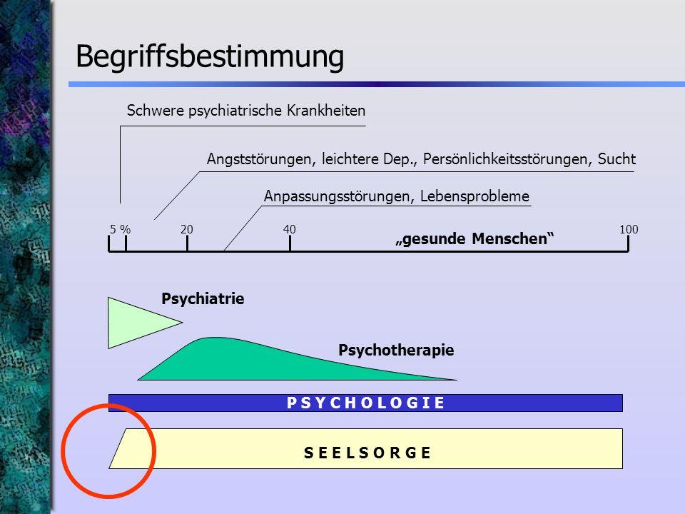 Begriffsbestimmung Schwere psychiatrische Krankheiten