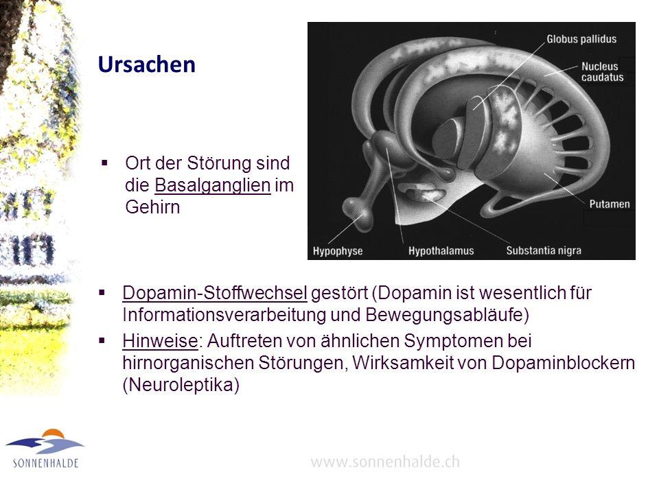 Ursachen Ort der Störung sind die Basalganglien im Gehirn