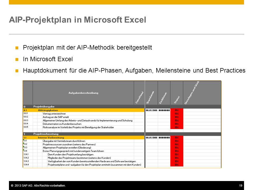 AIP-Projektplan in Microsoft Excel