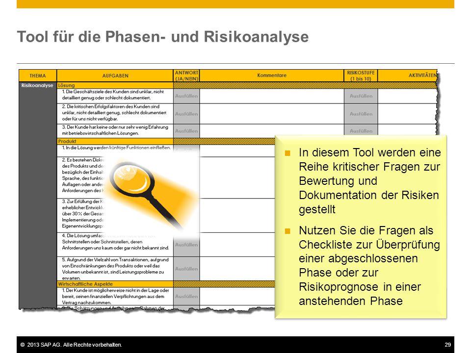 Tool für die Phasen- und Risikoanalyse