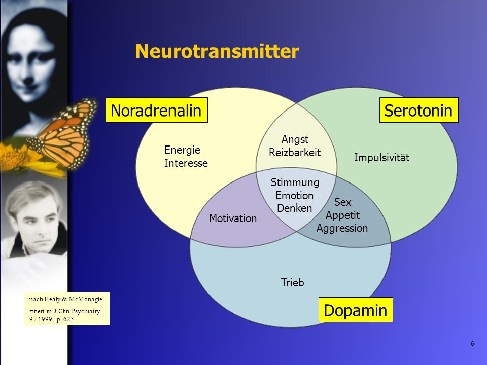 Neurotransmitter Noradrenalin Serotonin Dopamin Angst Reizbarkeit