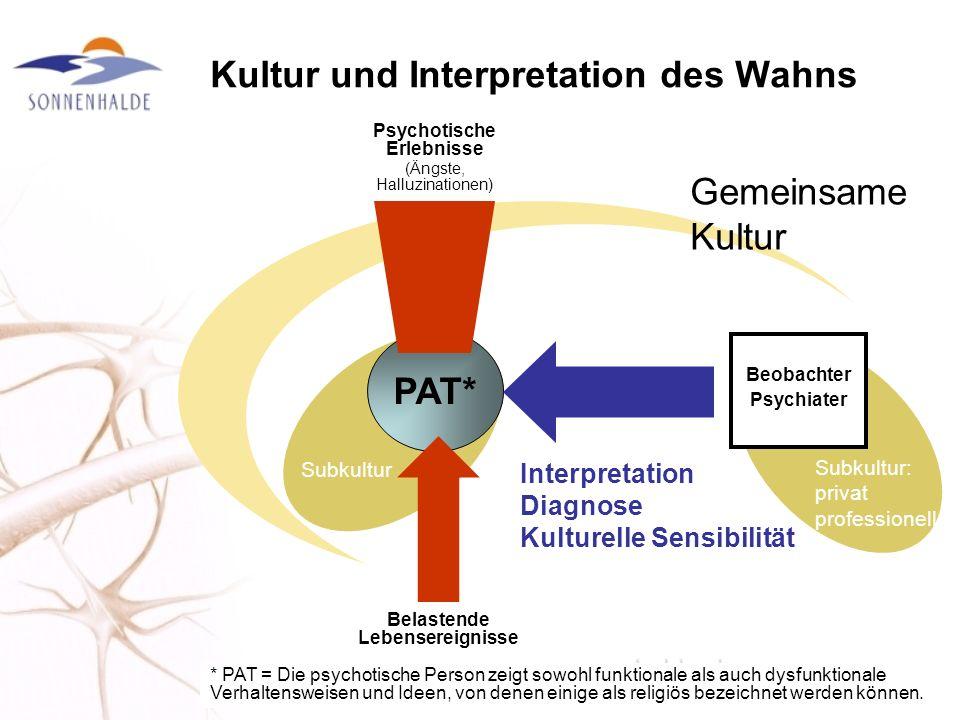 Kultur und Interpretation des Wahns