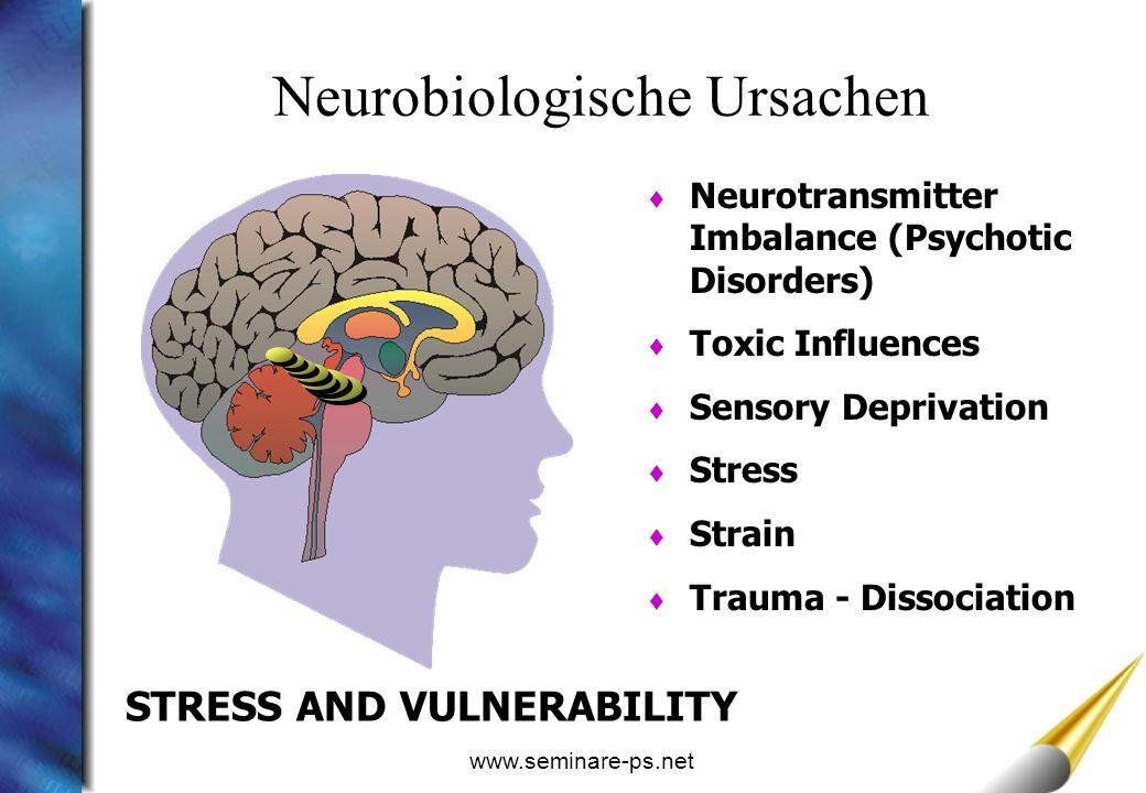Neurobiologische Ursachen
