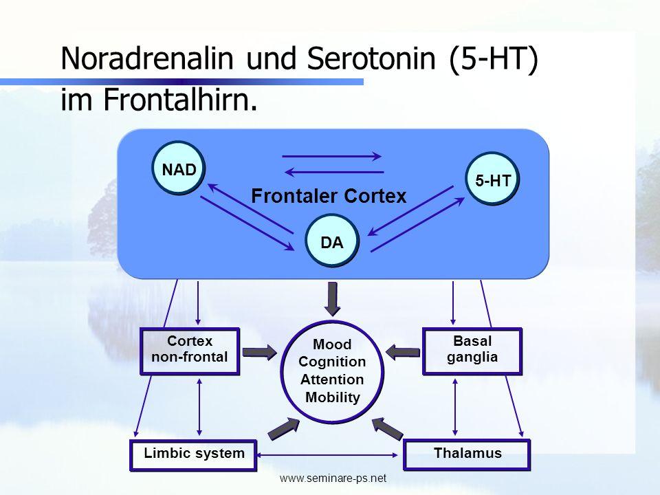 Noradrenalin und Serotonin (5-HT) im Frontalhirn.