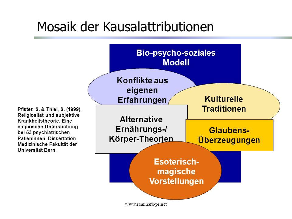 Mosaik der Kausalattributionen