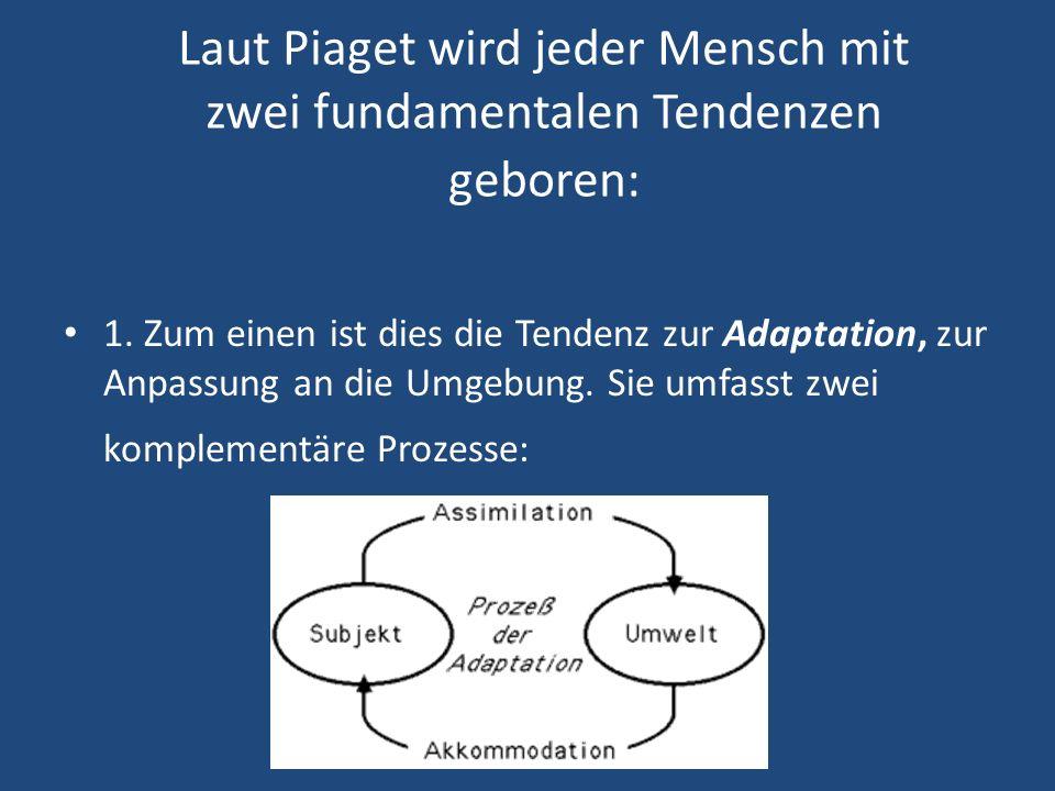 Laut Piaget wird jeder Mensch mit zwei fundamentalen Tendenzen geboren: