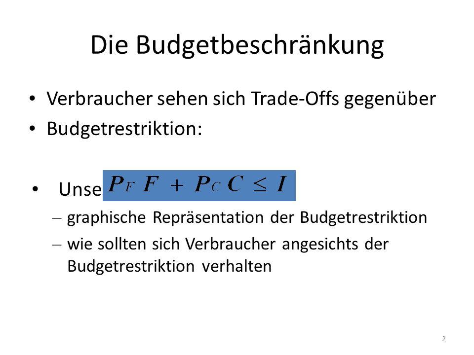 Die Budgetbeschränkung