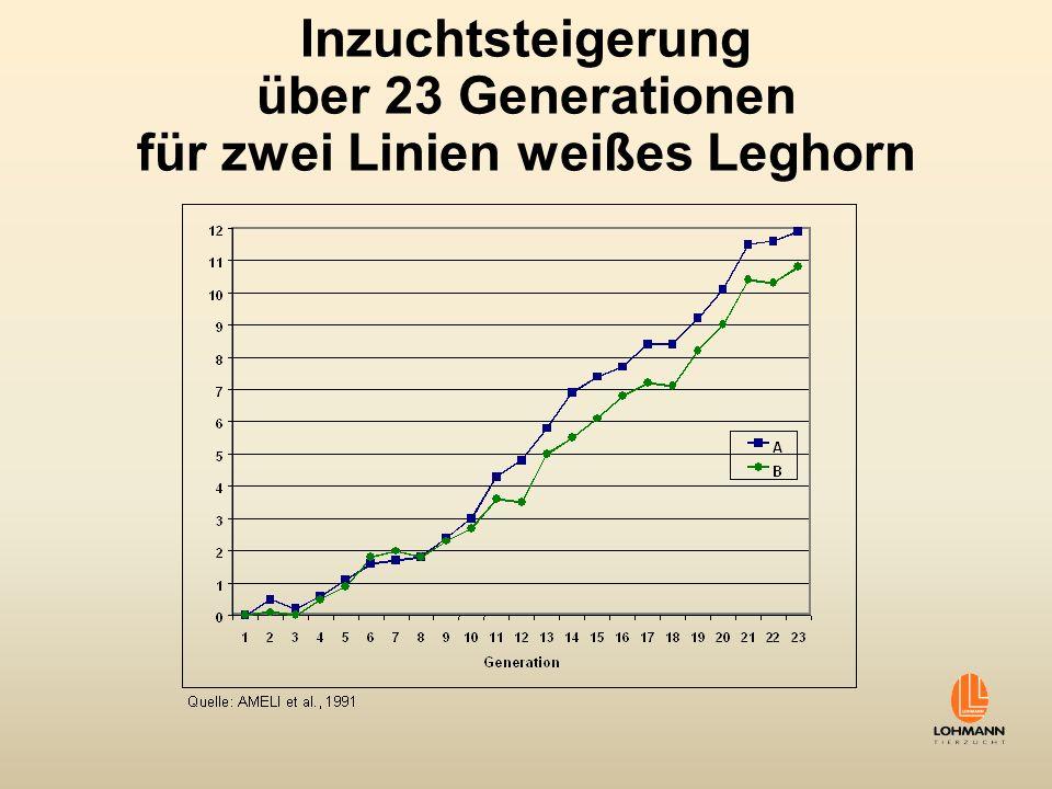 Inzuchtsteigerung über 23 Generationen für zwei Linien weißes Leghorn