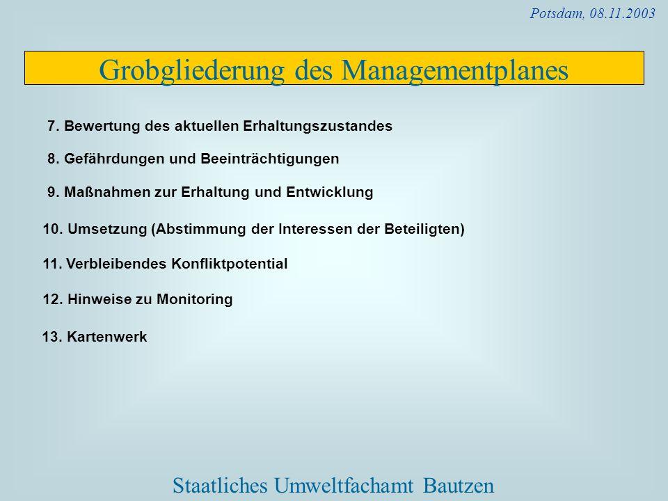 Grobgliederung des Managementplanes