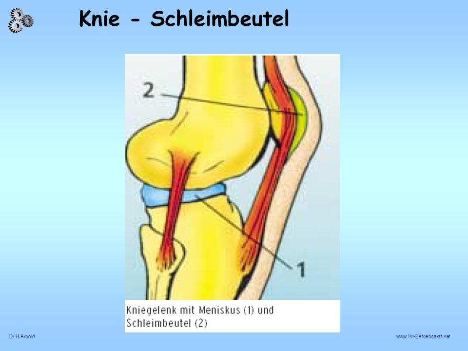 Knie - Schleimbeutel