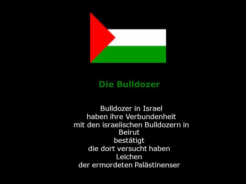 .Die Bulldozer. Bulldozer in Israel haben ihre Verbundenheit mit den israelischen Bulldozern in.