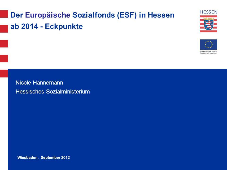 Der Europäische Sozialfonds (ESF) in Hessen ab 2014 - Eckpunkte
