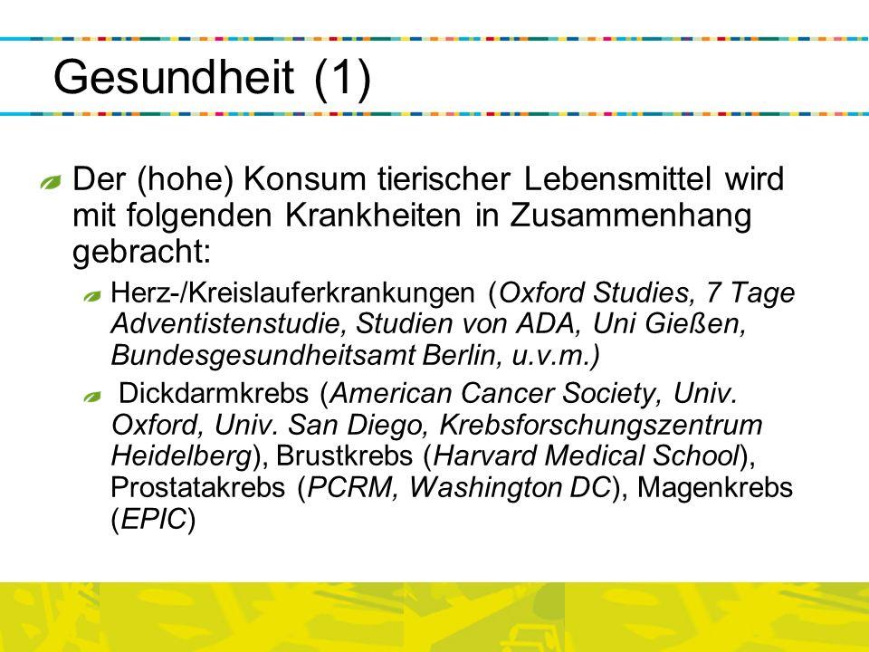 Gesundheit (1) Der (hohe) Konsum tierischer Lebensmittel wird mit folgenden Krankheiten in Zusammenhang gebracht: