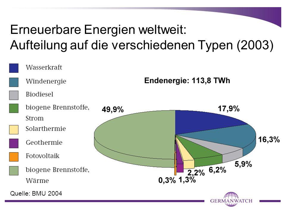 Erneuerbare Energien weltweit: Aufteilung auf die verschiedenen Typen (2003)
