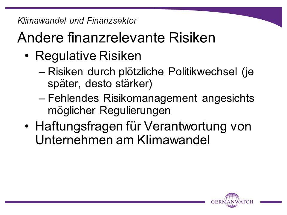 Andere finanzrelevante Risiken