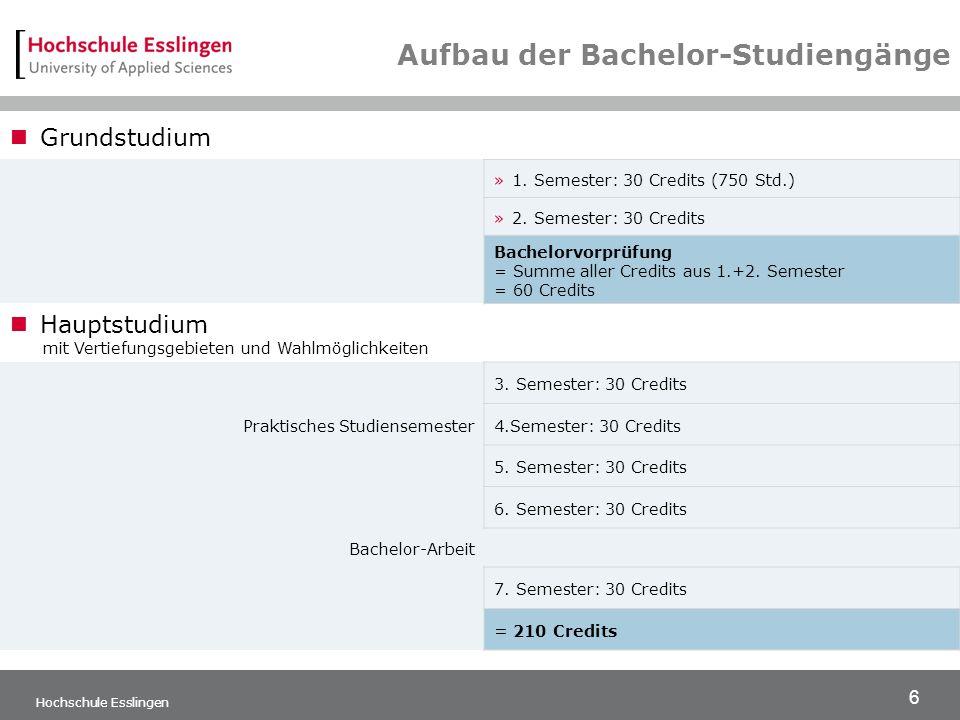 Aufbau der Bachelor-Studiengänge