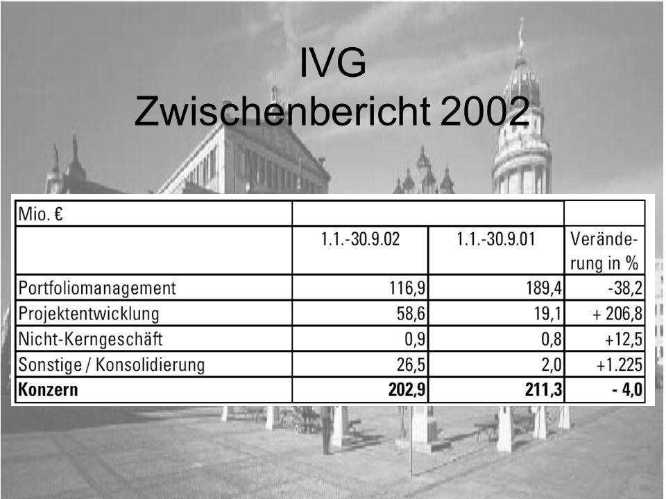 IVG Zwischenbericht 2002