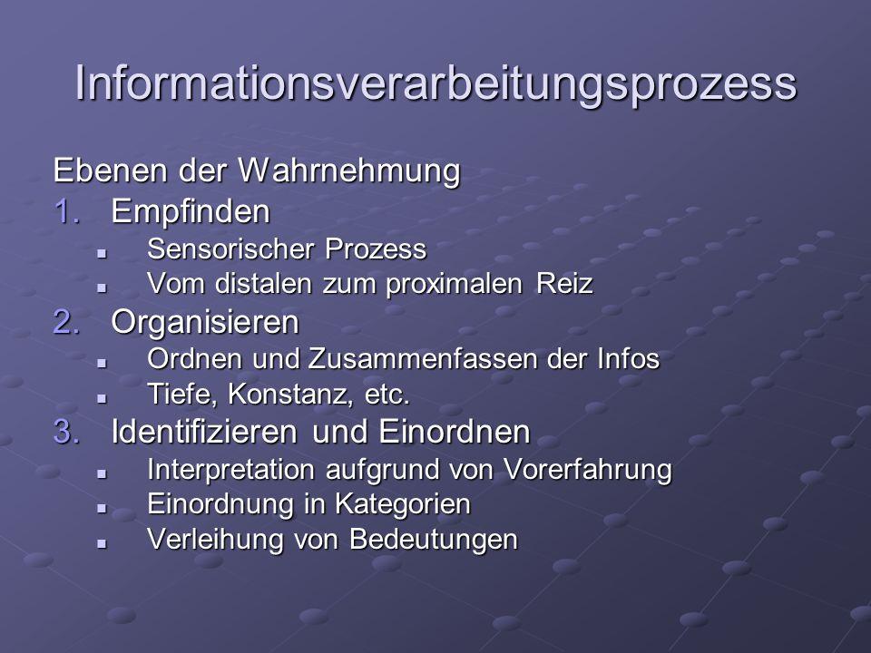 Informationsverarbeitungsprozess