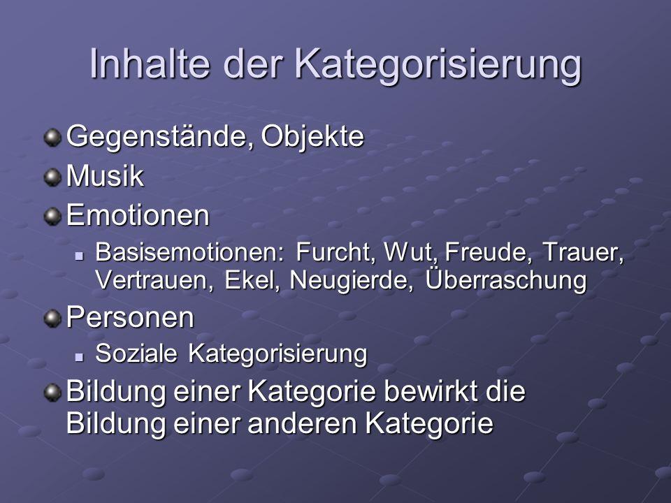 Inhalte der Kategorisierung