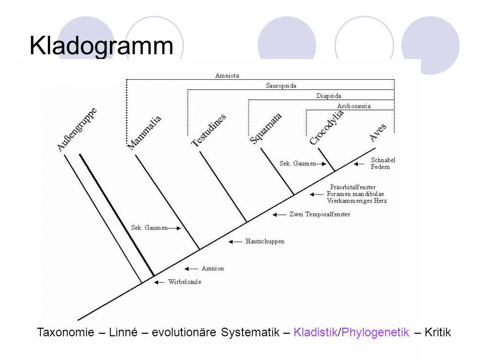 Kladogramm Taxonomie – Linné – evolutionäre Systematik – Kladistik/Phylogenetik – Kritik