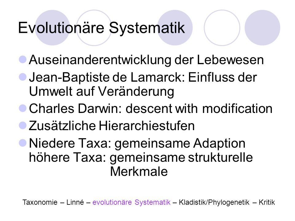 Evolutionäre Systematik