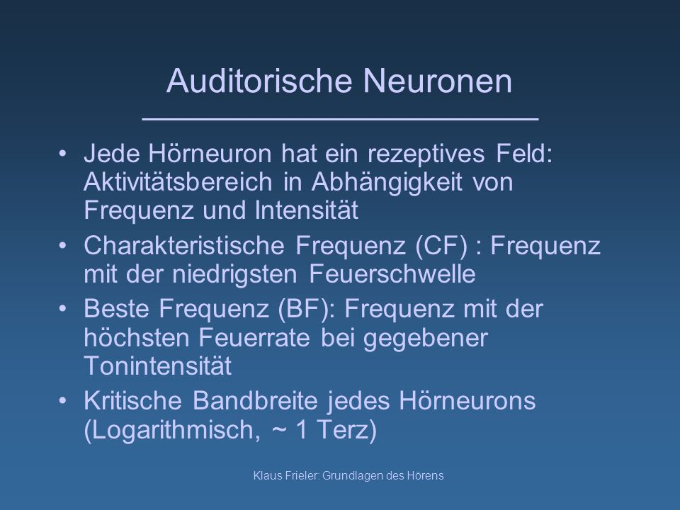 Auditorische Neuronen