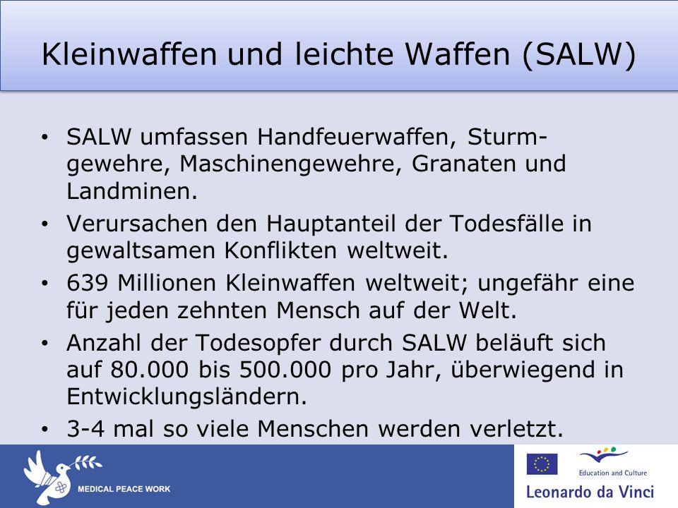 Kleinwaffen und leichte Waffen (SALW)