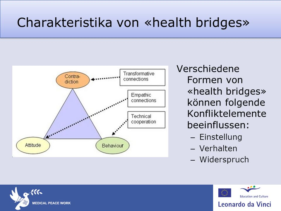 Charakteristika von «health bridges»