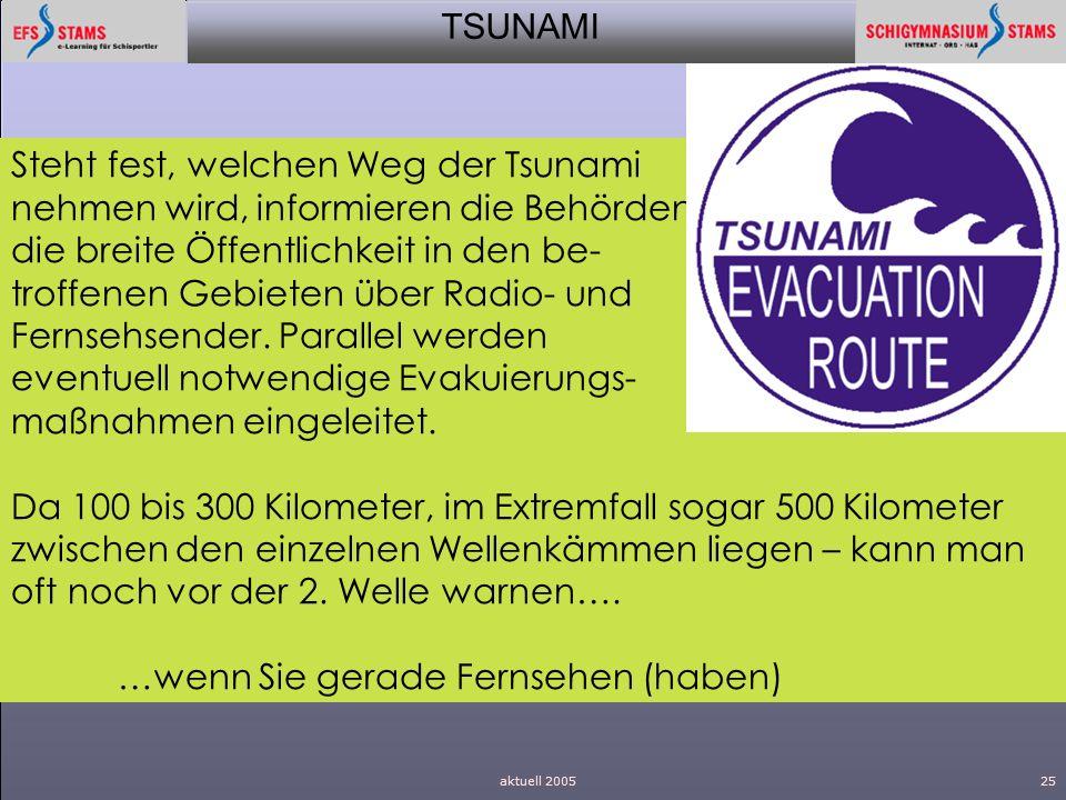 Steht fest, welchen Weg der Tsunami