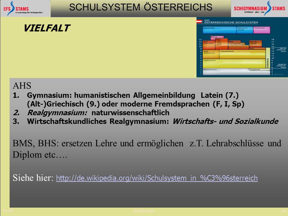 BMS, BHS: ersetzen Lehre und ermöglichen z.T. Lehrabschlüsse und